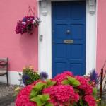 Hydrangea Door