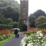 Man Walking Dogs in Garden