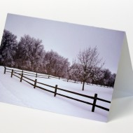 winter stillness card web white