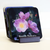 wildflower Coaster Set Products