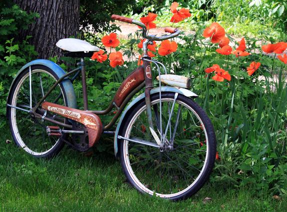 poppy_bike