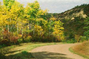 c61-Pembina-Gorge.jpg