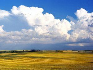 c80-Prairie-Skies-.jpg