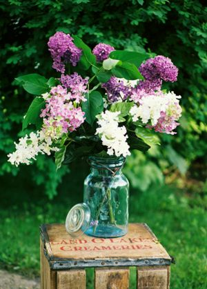 c36-Lilacs-Jar.jpg