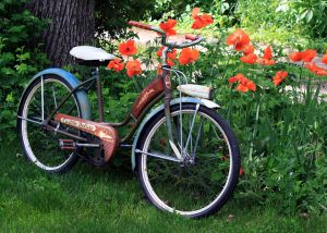 poppy-bike-web.jpg