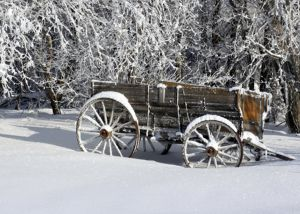 Winter-Wagon-II.jpg