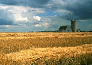 Harvest-Storm.jpg