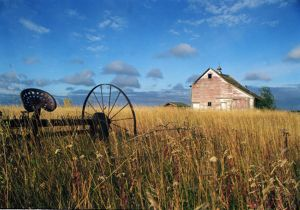 Prairie-Memories.jpg
